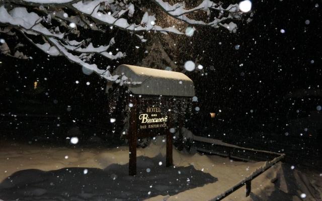 Winter Camp Val di Sole I - wczasy 2020 - tydzień 2