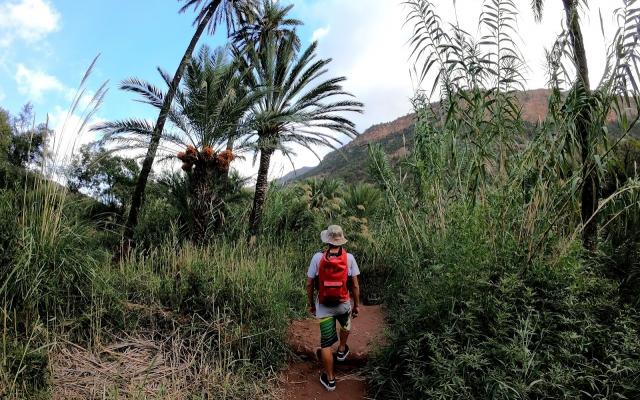 Surf Camp Maroko 2019 - wyjazd Surfingowy dla dorosłych